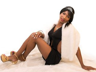 image of tranny cam model slutvanesa