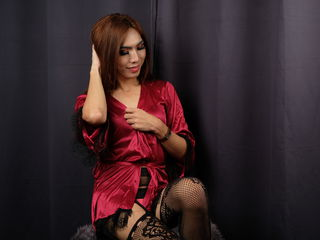 tranny chat model NudeDreamsIvory