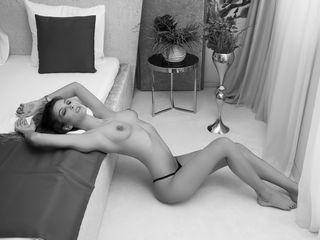 Horny monyquex